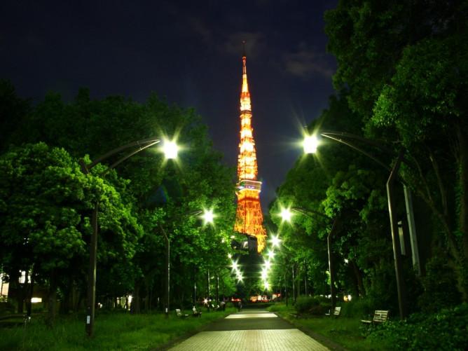 tower_shiba